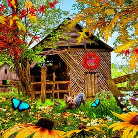 Butterflies Country Colors by Debra and Dave Vanderlaan