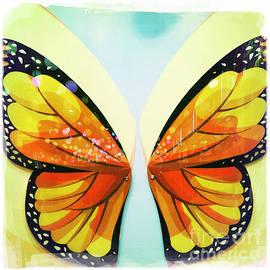 Butterflies by Nina Prommer