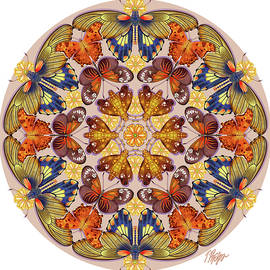 Butterfly Collection Nature Mandala by Tim Phelps