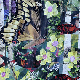 Butterfly, Fish and Flowers by Janyce Boynton