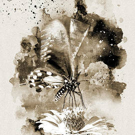 Butterfly - Monochromatic by Anthony Ellis