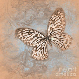 Butterly and Floral Swirls Nature pastel painting by Tina Lavoie