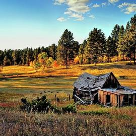 Cabin In The Black Hills by Michael R Anderson