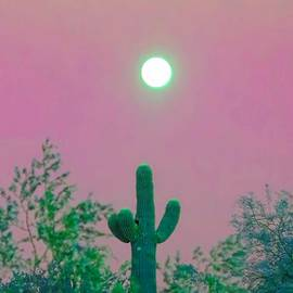 Cactus Full Moonrise in Aries by Judy Kennedy