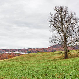Cades Cove Scenic by Bill Chambers