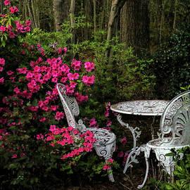 Cafe de Jardin by Ola Allen