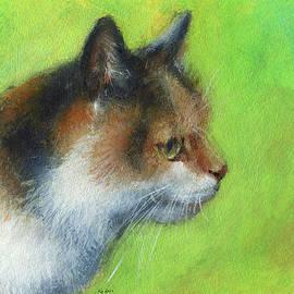 Calico cat portrait by Karen Kaspar