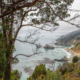 California Coast Near the Julia Pfeiffer State Park, vertical by Belinda Greb