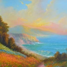 California Poppies by Ray Gilronan