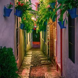 Calleja de las Flores Cordoba Spain Night by Joan Carroll