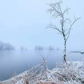 Calm lake landscape at winter by Juhani Viitanen
