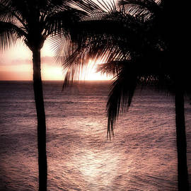 Calming Maui Palms by Michele Hancock Photography