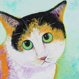 Calvin the Calico Cat by Jan Matson