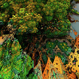 Camphor Tree by Sebastian Paluch