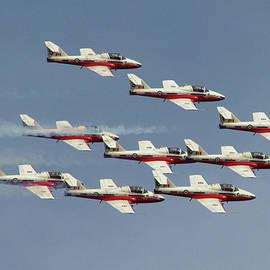 Canadian Snowbirds Aerobatic Team by Del Andrew