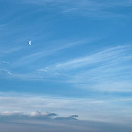 Canadian winter morning sky by Karen Rispin