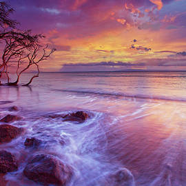 Candy Colors by James Roemmling