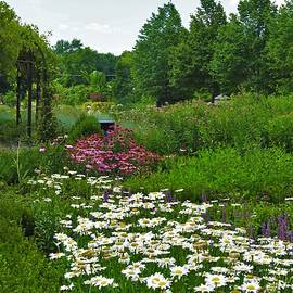 Cantigny Gardens Warrenville Illinois by Barbara Ebeling