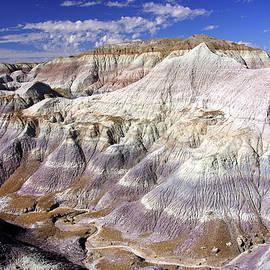 Canyon At Blue Mesa by Douglas Taylor