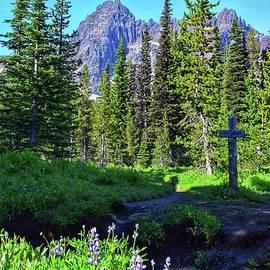 Canyon Creek Meadows by Dana Hardy