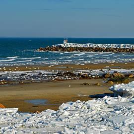 Cape Cod Bay in January by Dianne Cowen