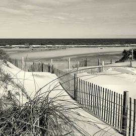 Cape Cod Beach - Monochrome  by Dianne Cowen