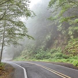 Cape Lookout Road by Beautiful Oregon