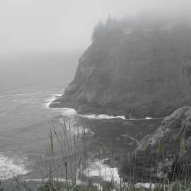 Cape Meares by William Moore