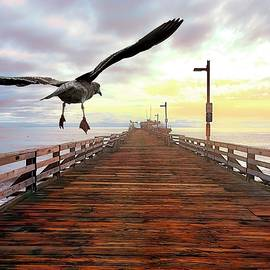 Capitola Pier Landing by Christina Ford