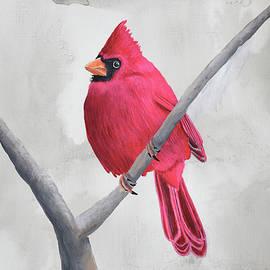 Cardinal #2 by Brady Nielson