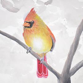 Cardinal #5 by Brady Nielson
