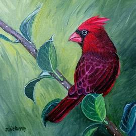 Cardinal at Rest by Julie Brugh Riffey