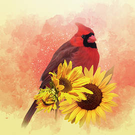 Cardinal on Sunflowers by Patti Deters