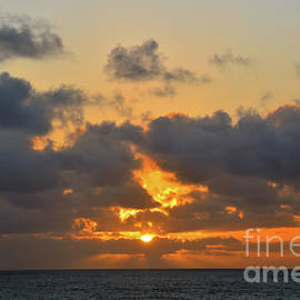 Caribbean Sunset Silhouette  by Robyn King