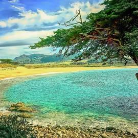 Carmel River State Beach by Christina Ford