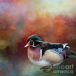 Carolina Duck by Eva Lechner