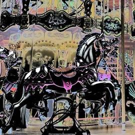 Carousel  by Matthew Dodd