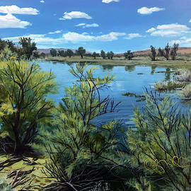 Carson River at Lahontan by Becky Miller