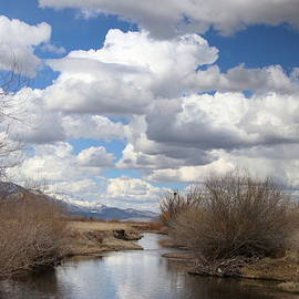 Carson Valley Nevada by Cheryl Broumley