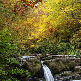 Cascades into an Autumn Pool by Debra and Dave Vanderlaan