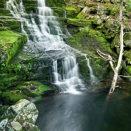Cascades Of Falls Brook by T-S Photo Art