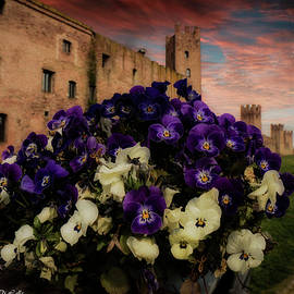 Montagnana Castle Verona Italy by Rita Di Lalla