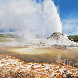 Castle Geyser, Yellowstone national park, Wyoming, USA by Neale And Judith Clark