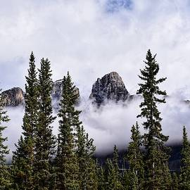 Castle Mountain in the Clouds by Dana Hardy