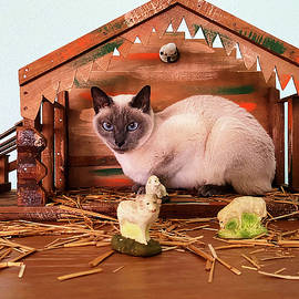 Cat in Manger by Sally Weigand