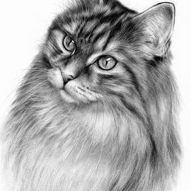Cat King by Danguole Serstinskaja