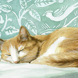 Cat Nap by Linda Apple
