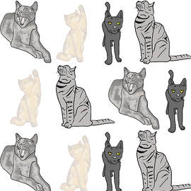 Cat Pattern by Marshal James