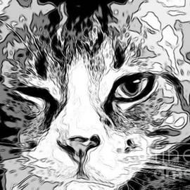 Cat Wink by Mesa Teresita