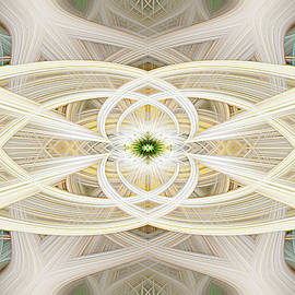 Cathedral Ceiling Abstract 1 by Teresa Wilson